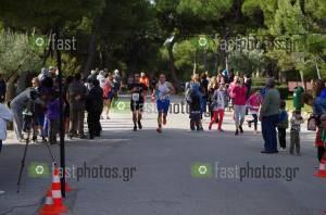 Φωτογραφία Αραφήνειος αγώνας δρόμου 2016