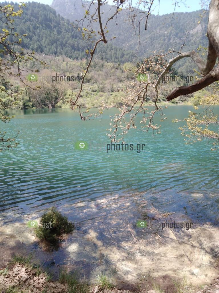 Φωτογραφία εικόνες